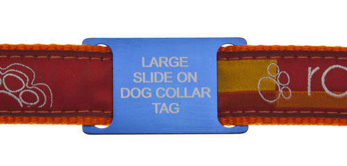 Tag Fitted To Collar